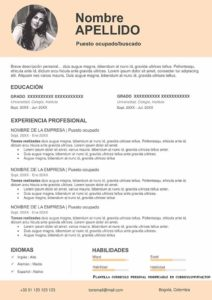 Modelo Curriculum personal vacio color salmon