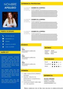 Plantilla curriculum Vitae Ikea para rellenar
